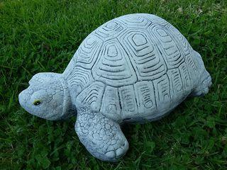 Large turtle $30