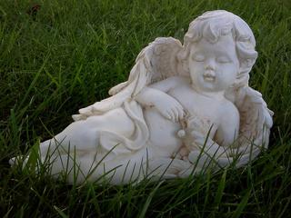 Small angel $20