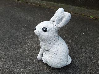 Rabbit standing $20