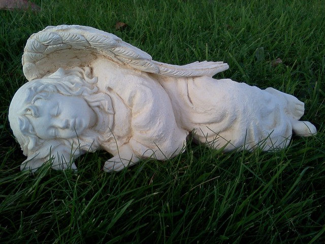 Sleeping angel $40