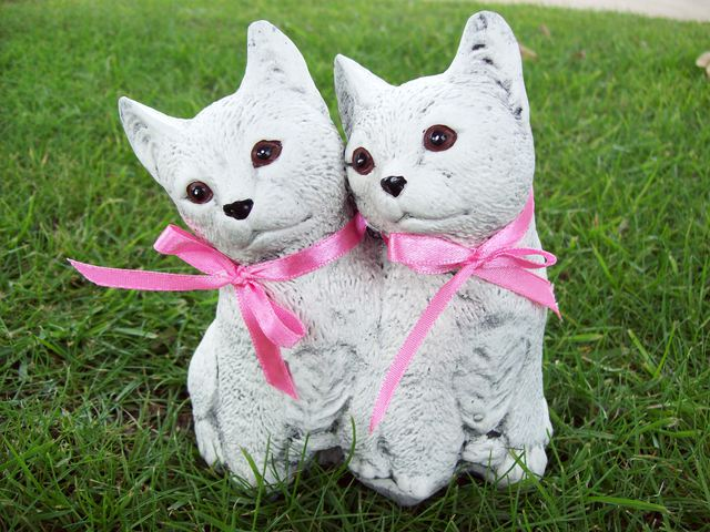 Twin cats standing $15
